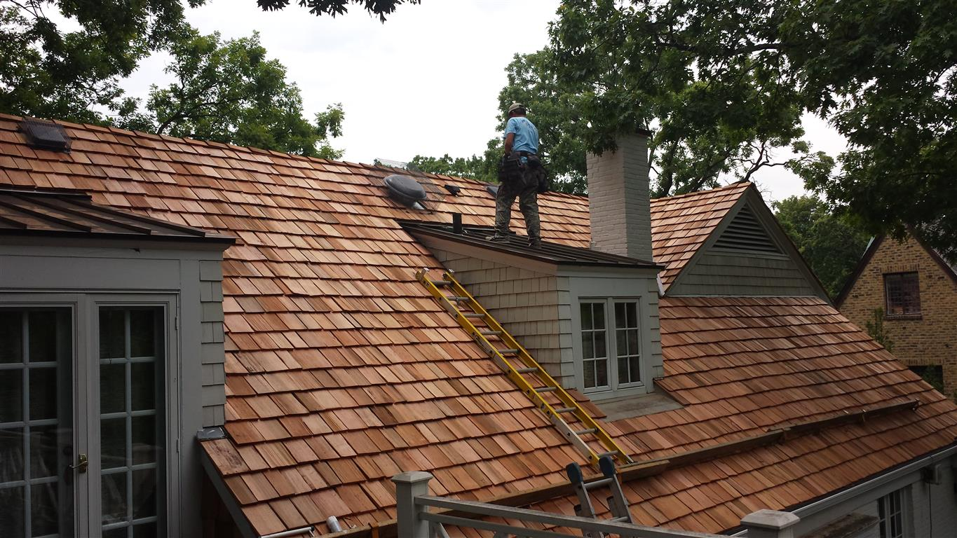 Cedar roof maintenance is crucial when curling is present
